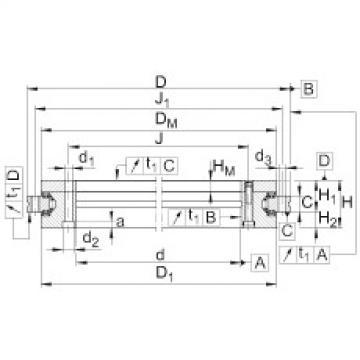 FAG Rolamento axial/radial - YRTSM200
