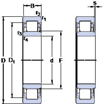 Rolando NU 312 ECJ SKF